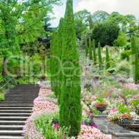 Flower garden and other plants, a staircase and a waterfall on t