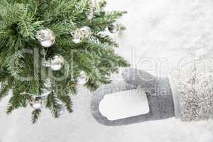 Green Christmas Tree, Gray Glove, Copy Space