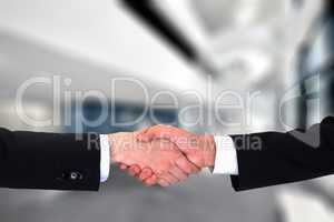 business handshake, agreement, success, congratulation