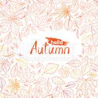 Fall leaf nature pattern with lettering hello Autumn. Autumn lea