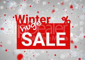 Winter Sale red rectangle with text and a grey background