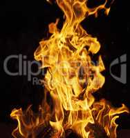 burning wooden logs and large orange flame