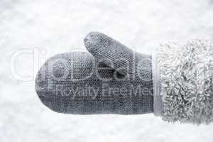 Wool Glove With Fleece, Snow In Background
