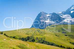stunning Alpine panorama of Eiger peak. Grindelwald Bernese Alps Switzerland Europe