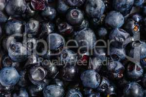 Blueberries horizontal background