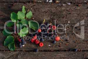 Fresh and ripe shadberry, raspberry with branch, leaves on wooden table