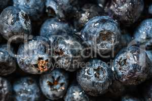 Blueberries with water drops.