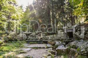 Quelle im Wald Weißmainquelle im Fichtelgebirge