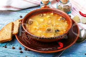 Ukrainian national soup