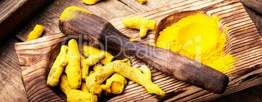 spice root turmeric
