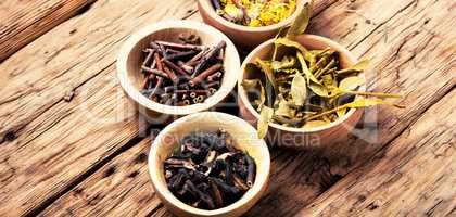 medicinal herbs and plants
