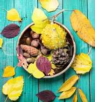 symbolic autumnal still life