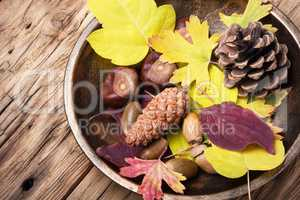 symbolic autumn still life