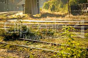 railway, track overgrown with green grass