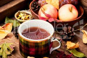 Cup of tea with autumn leaves