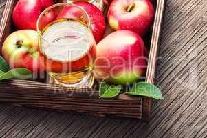 Apple cider cocktail