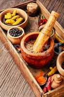 Mix indian spices