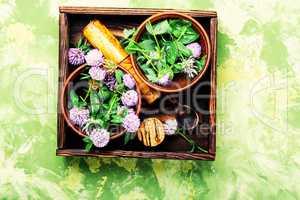 Wild flower clover
