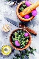 Onopordum.Herbalism.Thistle
