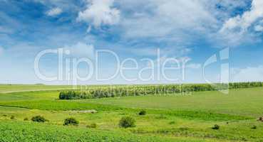 Hilly green field and windmill on blue sky background. Wide phot