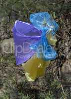 many multicolored plastic bags hanging on a pine branch against