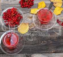 tea from fresh berries of viburnum in a transparent glass cup