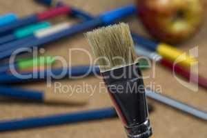 detail of brush bristles on cork background.