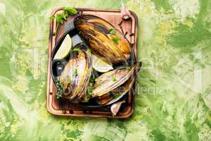 Delicious seafood mussels