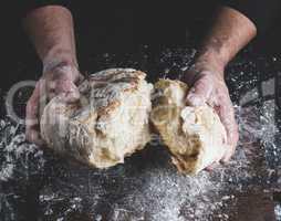 broken white bread in male hands