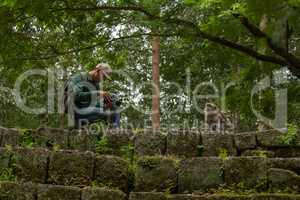 Tourist photographs long-tailed macaque on stone wall