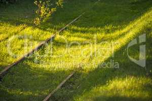 old rails overgrown with grass in light and shadow