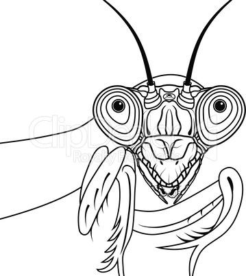 Portrait of green praying mantis vector illustration tattoo t-shirt design symbol for mascot or emblem design, logo sketch design.