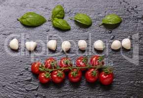 Mozzarella mit Tomaten und Basilikum