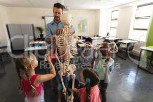 Male teacher explaining skeleton model in classroom