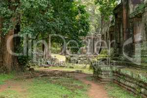 Walls of ruined stone temple in trees