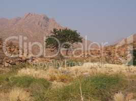 Steppe, Baum Mann und Berg in Afrika