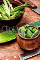 Cut Aloe Vera leaves