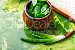 Cut Aloe Vera leaves with slice