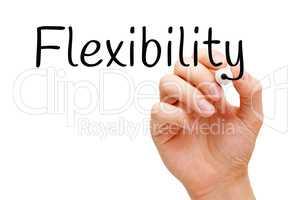 Word Flexibility Handwritten With Black Marker