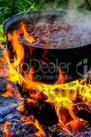 Cooking soup in a pot on campfire.