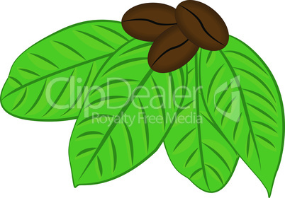 Coffee beans and  seeds and leaves flat color icon