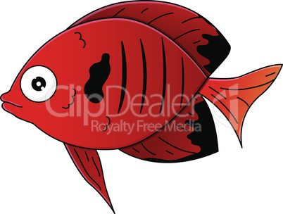 Cute red sea-fish in cartoon style. Vector illustration.