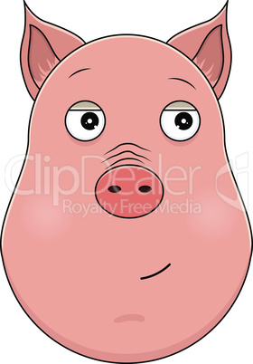 Head of trusting pig in cartoon style. Kawaii animal.
