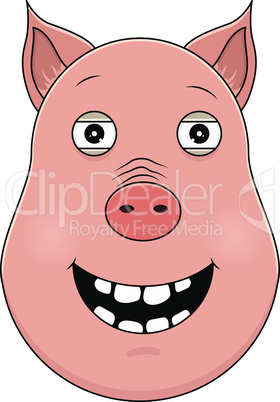 Head of happy pig in cartoon style. Kawaii animal.