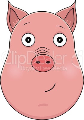 Head of serene pig in cartoon style. Kawaii animal.