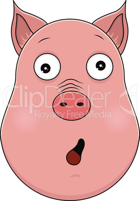 Head of amazed pig in cartoon style. Kawaii animal.