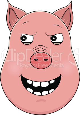 Head of malevolent pig in cartoon style. Kawaii animal.