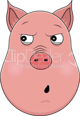 Head of paranoid pig in cartoon style. Kawaii animal.