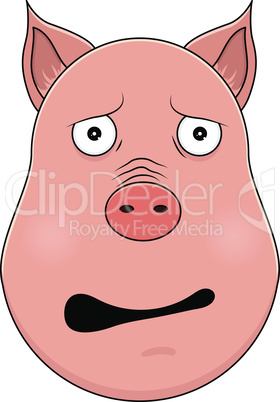 Head of afraid pig in cartoon style. Kawaii animal.