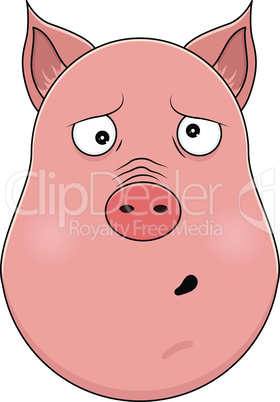 Head of clueless pig in cartoon style. Kawaii animal.